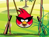 Angry-bird-get-eggs secure