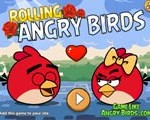 rolling-angry-birds-pu